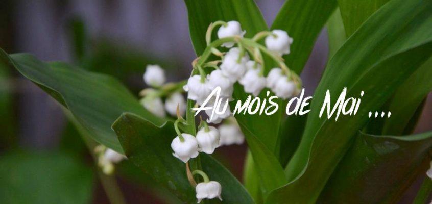 Au mois de mai, je serai à Villeneuve lès Maguelonne