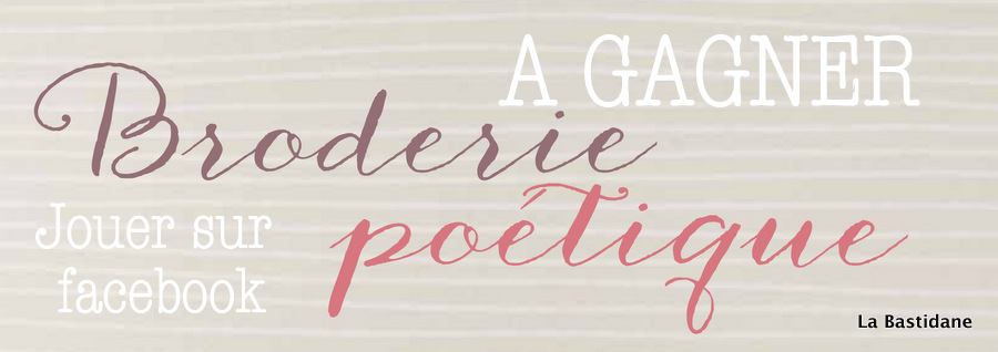 A gagner le livre, Broderie Poétique, l'été de la princesse des petits riens